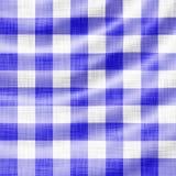 Wellenförmiges Picknicktuch Lizenzfreie Stockfotos
