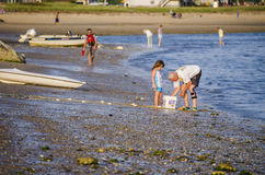 Wellfleet, USA - July 30, 2014: Grandfather with granddaughter catching fish in bucket on rocky beach shore in Cape Cod Stock Photos