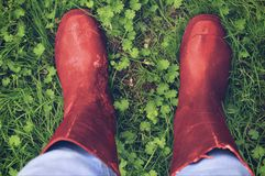 wellies Imagem de Stock Royalty Free
