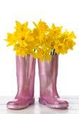 wellies daffodil Стоковая Фотография RF