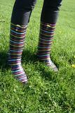 Wellies Stripy na grama Imagem de Stock Royalty Free