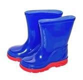 Wellington, (резиновые) ботинки Стоковое Изображение