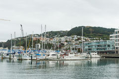 Wellington boats, New Zealand. Boats in Wellington waterfront, New Zealand. Wellington is the capital city and second most populous urban area of New Zealand as Stock Photos