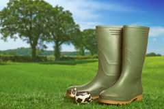 Wellington Boots Fotografie Stock