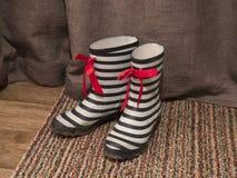 Wellington Boots Royalty-vrije Stock Fotografie