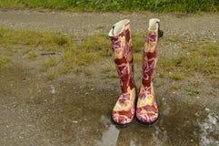 Wellington Boots Photo libre de droits