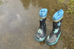 Wellington Boots Fotografia Stock Libera da Diritti