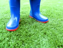 Wellington Boots. A child standing in wellington boots on a lawn of artificial grass royalty free stock image