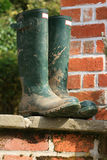 Wellington Boots. A pair of gardening boots set on a patio step. Backdrop consists of the end of a bricked building Stock Photos