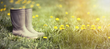 Wellington boots banner Royalty Free Stock Photo