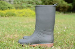 Wellington boots on grass. In the garden Royalty Free Stock Photography