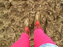 Muddy wellies boots summer music festival fashion. Looking down at a woman's legs encased in pink tights and floral wellies Wellington boots standing in wet mud Royalty Free Stock Photography