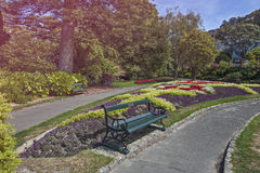 Wellington Botanic Garden, Nova Zelândia Fotos de Stock