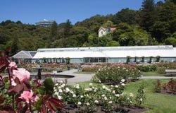 Wellington Botanic Gardens imagem de stock