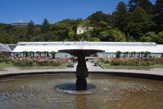 Wellington Botanic Gardens fotos de stock royalty free