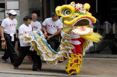 Free Wellington Chinese New Year Snake Stock Photo - 29424010