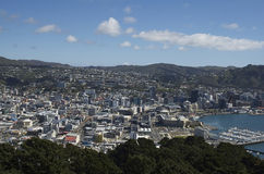 Wellington City. This was taken from My Victoria looking over Wellington CBD Stock Photos