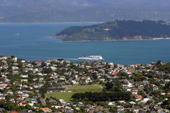 Wellington City beskådade från monteringen Kau Kau, Nya Zeeland Royaltyfria Bilder