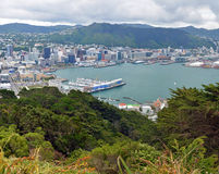 Wellington City & Harbour Vertical Panorama, New Zealand Royalty Free Stock Image
