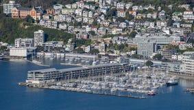 Wellington City Panorama dalle colline di Tinakori Fotografia Stock Libera da Diritti