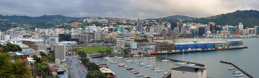 Wellington City Panorama in early Morning, New Zealand Stock Photography