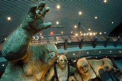 O filme de Hobbit imagens de stock royalty free