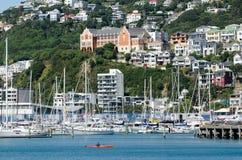 Wellington Marina royaltyfri fotografi