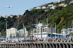 Wellington strand royaltyfria bilder