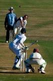 Cricket del gioco della gente Fotografia Stock Libera da Diritti