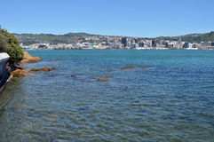 Wellington Harbour & City Vertical Early Morning Panorama stock photos