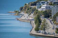 Wellington Harbour en Oosterse Baai Stock Foto