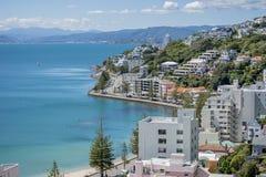Wellington Harbour en Oosterse Baai Royalty-vrije Stock Afbeelding