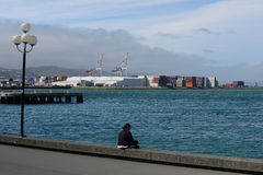 Wellington harbour Royalty Free Stock Photos