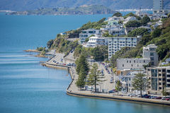 Wellington Harbour and Oriental Bay Royalty Free Stock Photography