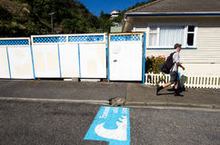 Wellington Cityscape. WELLINGTON - MAR 01:Tsunami safe zone marked on the streets of Wellington,NZ on March 30 2013.Tsunami generated by an earthquake in Cook Royalty Free Stock Images