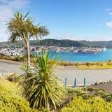 Wellington, Mount Victoria Lookout, New Zealand Stock Photos
