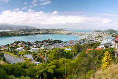 Wellington, Mount Victoria Lookout, New Zealand Royalty Free Stock Images