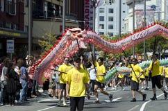 Wellington-Neujahrsfest-Schlange Lizenzfreies Stockfoto