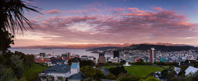 Wellington New Zealand royaltyfri bild