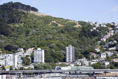 Wellington Northern Suburb Royalty Free Stock Photography