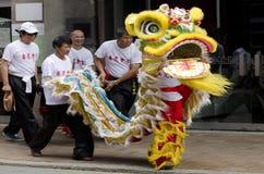Wellington nowego roku Chiński wąż Zdjęcie Stock