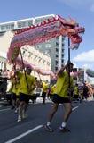 Wellington nowego roku Chiński wąż Obraz Royalty Free
