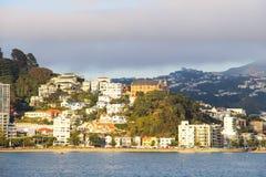 Wellington-` s Hafenstandpunkt stockfotografie