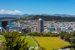 Wellington Skyline Fotografia Stock