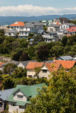 Wellington suburb Royalty Free Stock Image