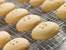 Wellington-Tasten-Biskuite auf einer abkühlenden Zahnstange Stockbild