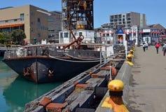 Wellington Waterfront, skeppsdockor, CBD och Te Papa Museum Arkivfoton