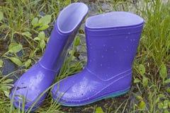 Wellingtons在春天雨天 免版税库存图片