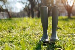 Wellingtons стоя на зеленой лужайке Стоковое фото RF