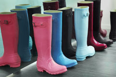 Wellingtons Royalty Free Stock Photos